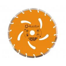 230*22,2 мм Сегмент BLACK STAR Диск алмазный 30-23002